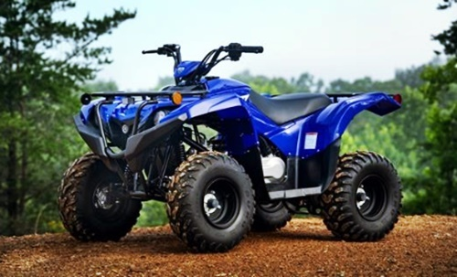 Photo of 2021 Yamaha Grizzly 90 Rumors