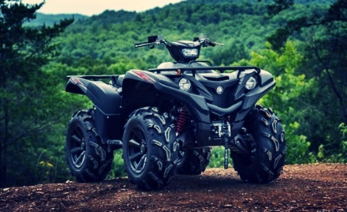 Photo of 2021 Yamaha Grizzly EPS SE