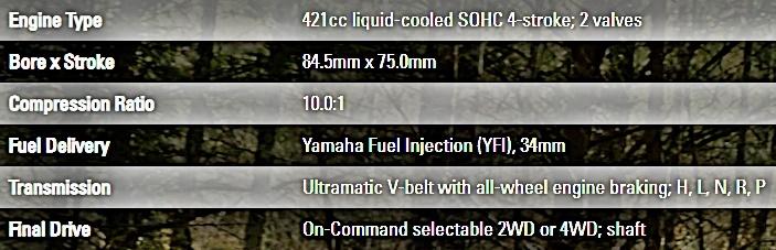 Yamaha Kodiak 450 EPS Engine